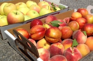 Peaches, nectarines and apples, oh my!